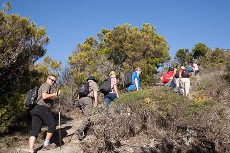 Wandelaars op weg naar de top van de Garajonay op La Gomera