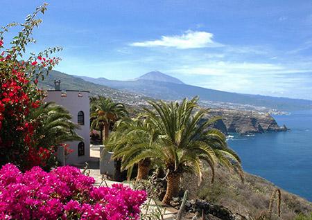 Vakantiehuis met zwembad van Interhome op Tenerife