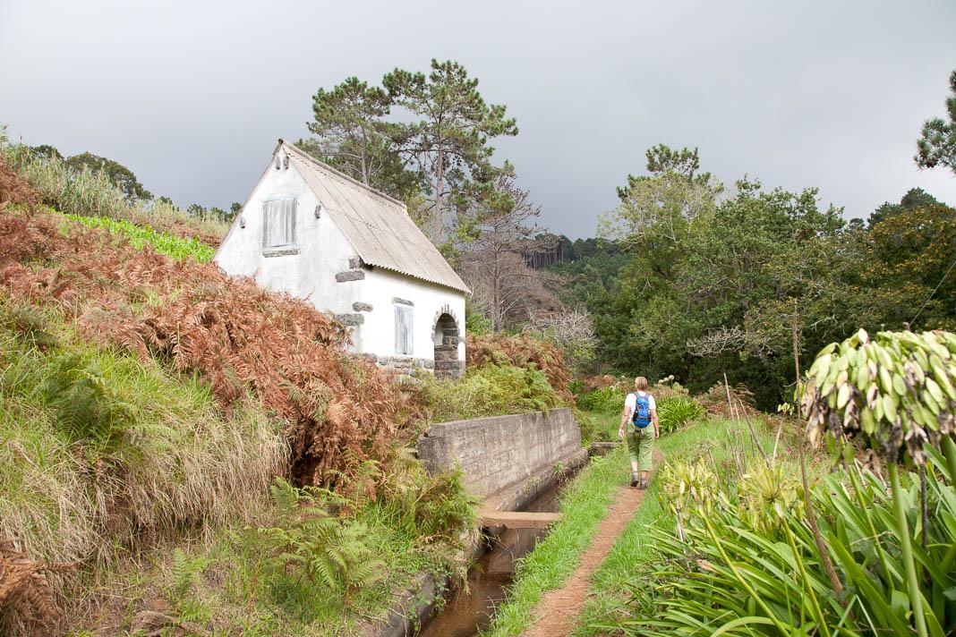 Wandelen langs levada's op Madeira