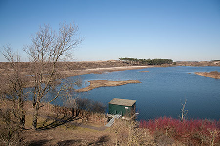 Het Vogelmeer, Kennemerduinen