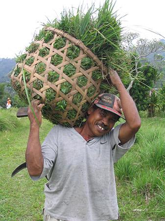 Een boer op Bali