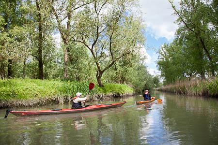 Kanoen in de Hollandse Biesbosch