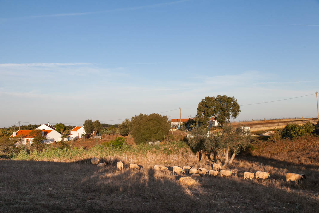 Glamping in Alentejo, Portugal