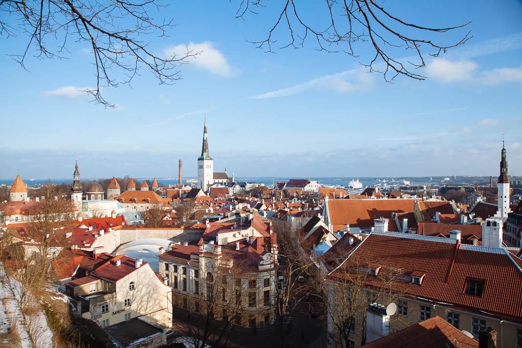Uitzicht op de historische binnenstad van Talinn