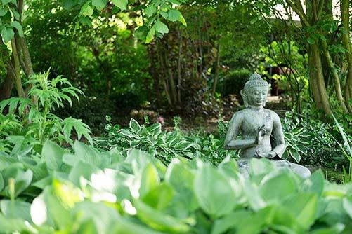 Oortjeshekken tuin