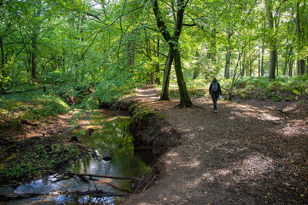 Wandelen op Landgoed de Utrecht