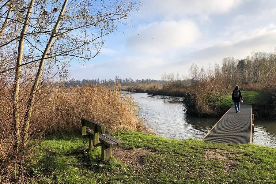 De Brabantse Biesbosch